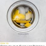 freshen-garbage-disposal