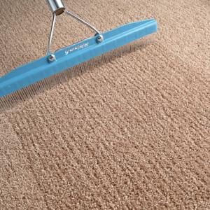 Rake For Carpet - Sears