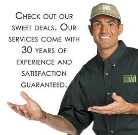 Kiwi Services