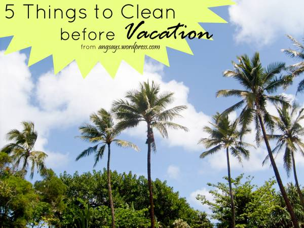 What to Clean Before Vacation