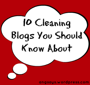 Cleaning Blogs