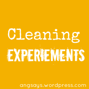 cleaning-experiements
