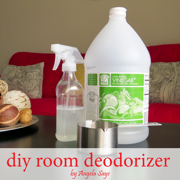 Eliminate Musty Smell How To Get Rid Of The Musty Smell Diy Room Deodorizer  Angela Says