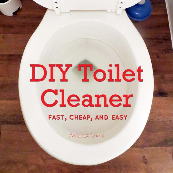 DIY Toilet Cleaner - Angela Says