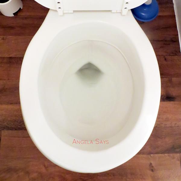 homemade-toilet-cleaner