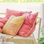 Start Spring Cleaning Tips