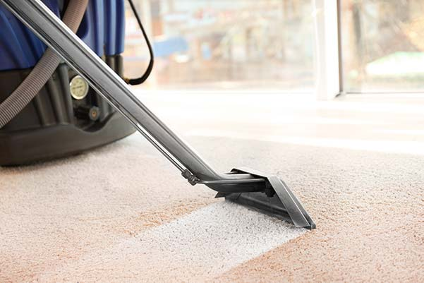 Lake Bluff Carpet Cleaning