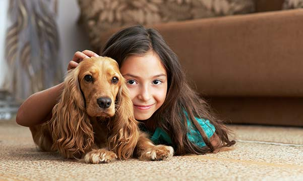 What is the Most Durable Carpet for Pet Stains?