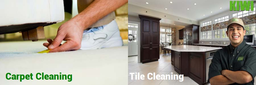Clean carpet and tile floors