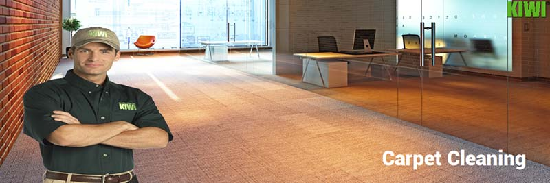 professional commercial carpet cleaning austin