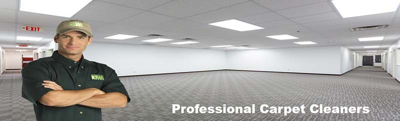 professional commercial carpet cleaning dallas