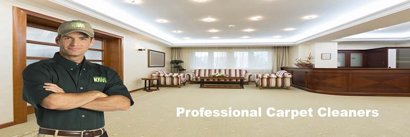 professional commercial carpet cleaning denver
