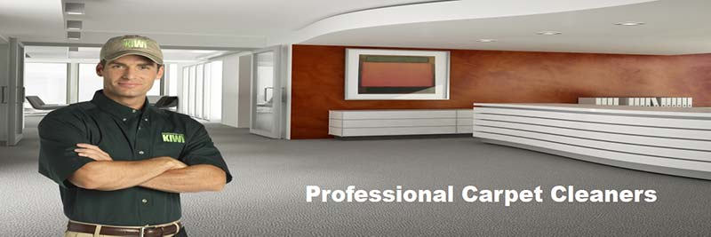 professional commercial carpet cleaning fort worth