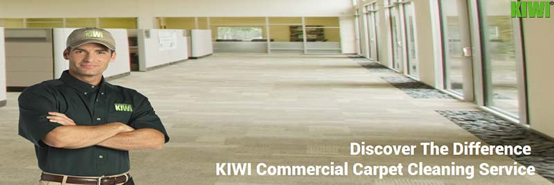 professional commercial carpet cleaning houston