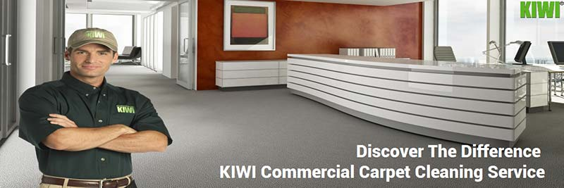 professional commercial carpet cleaning phoenix
