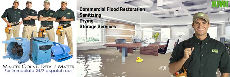 professional commercial water damage restoration denver