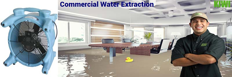 Commercial water extraction