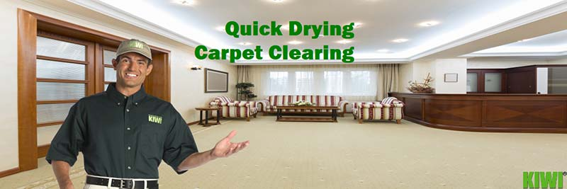 Quick Drying Carpet Cleaning service