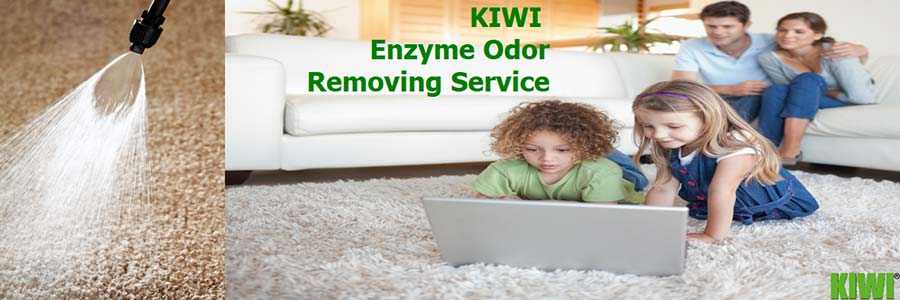 Odor removed from carpet by enzyme with kids