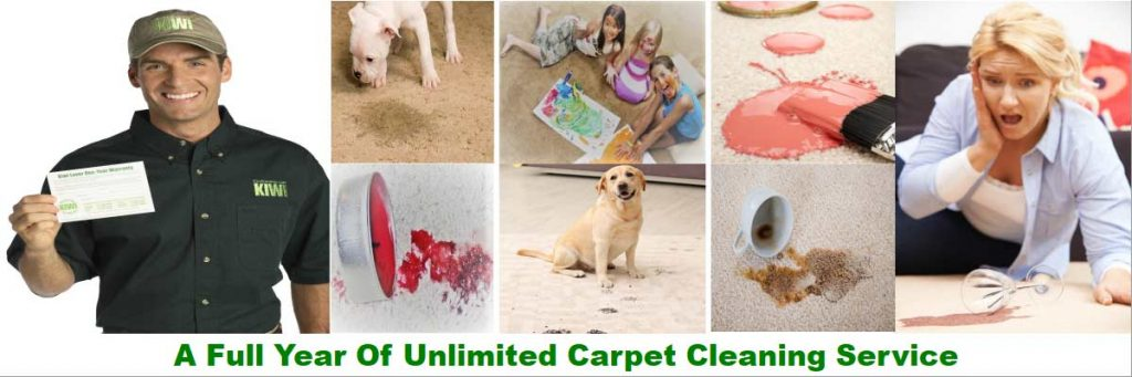 unlimited carpet cleaning service