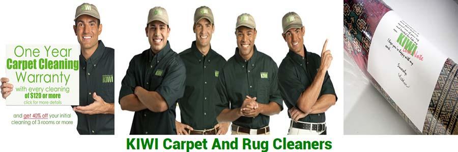 kiwi carpet and rug cleaners