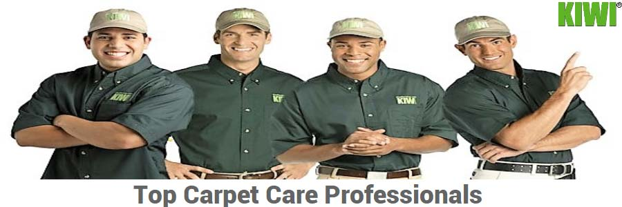 Carpet care techs