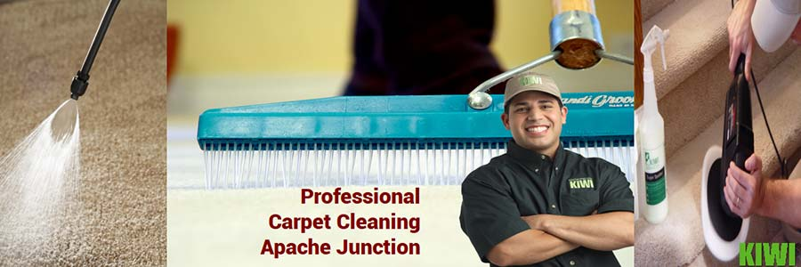 carpet cleaned by pro tech in apache junction