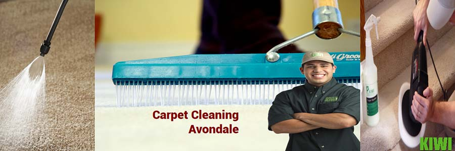 carpet cleaned by pro tech in avondale