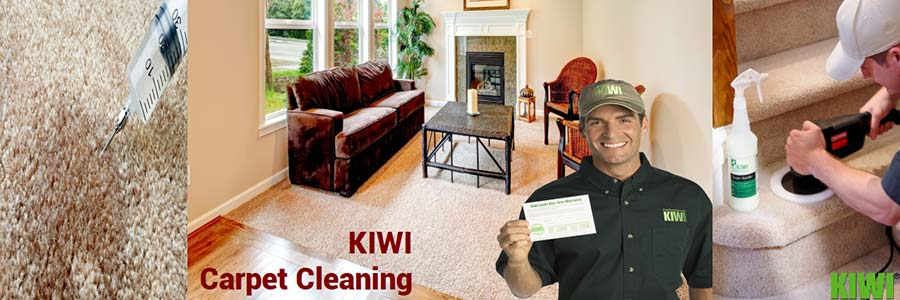 carpet cleaning by Kiwi technician in  el mirage