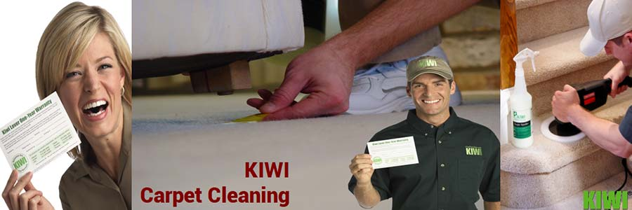 carpet cleaning by Kiwi technician in fountain hills