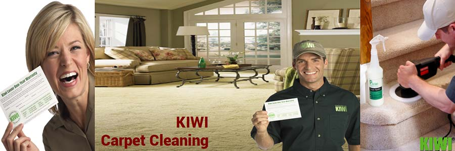carpet cleaning by Kiwi technician in gilbert