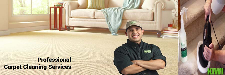 carpet cleaned and groomed in goodyear