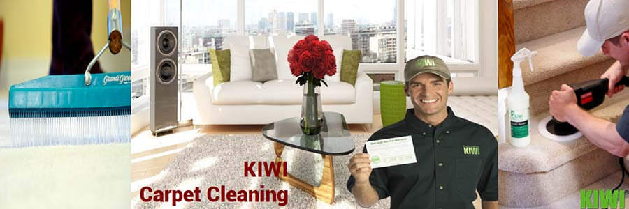 carpet cleaning by Kiwi technician in laveen