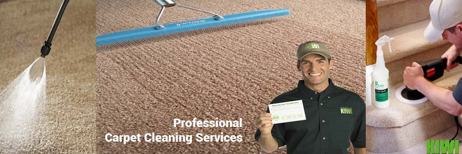 carpet cleaning by Kiwi technician in litchfield park