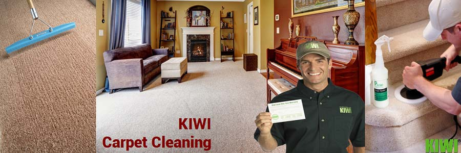 carpet cleaning by Kiwi technician in  mesa