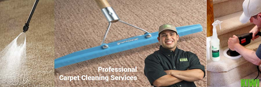 carpet cleaning by Kiwi technician in paradise valley