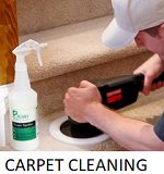 Get Free Online Carpet Cleaning quote