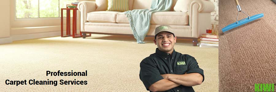 carpet cleaned and groomed in rio verde