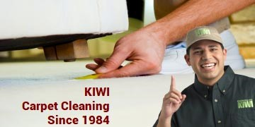 carpet cleaning with 2 kiwi techs