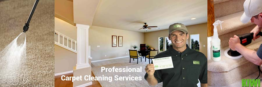 Carpet Cleaning Surprise Az Kiwi Kiwi Cleaning Services