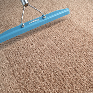 Argyle carpet cleaning