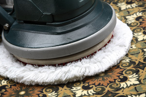 $7 Per Room Carpet Cleaning