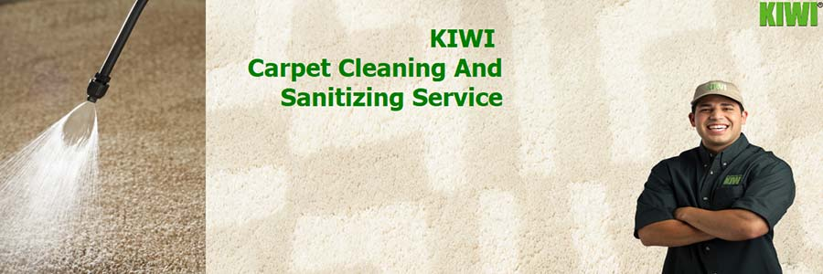 Clean and sanitized carpets