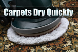 quick drying carpet cleaning