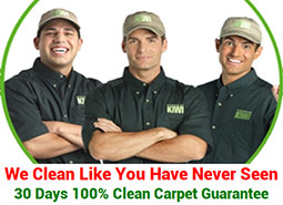 Carpet Cleaners From Kiwi