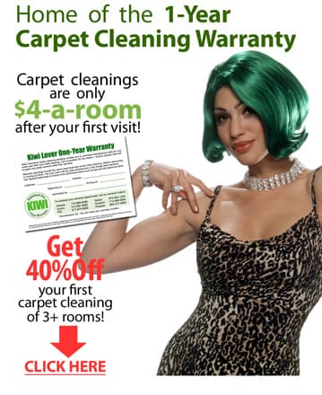 Klein Carpet Cleaning Sale – $4 a Room