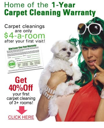 Fort Worth Carpet Cleaning Warranty - Get 40% Off With Kiwi