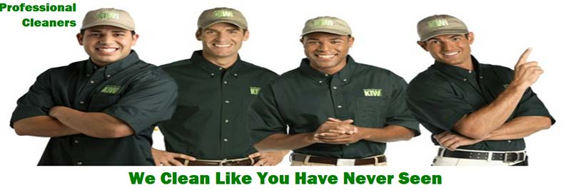 KIWI professional Cleaners