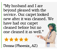 carpet cleaning phoenix loves kiwi services