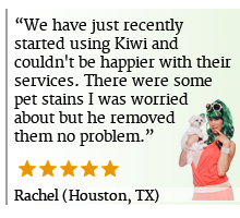 Rug Cleaning Review KIWI Houston